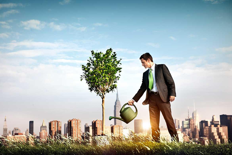 Homem regando uma planta - Dicas de como iniciar o seu negócio